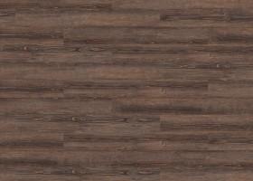 Rusty Pine